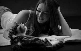 Cum împaci alergiile cu pisica, ca animal de companie