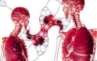 Hemangiomul hepatic este o tumoră benignă aflată la nivelul ficatului alcătuită dintr-o aglomerare de vase de sânge. Această tumoră nu manifestă de obicei simptome și nu necesită tratament, fiind adesea descoperită în timpul analizelor pentru alte afecțiuni.Imagine cu ficatul uman