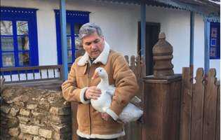 Mircea Radu post