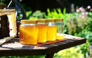 9 beneficii uimitoare pe care le are mierea naturală