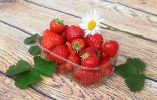 Vitamina K previne hemoragia la sugari. Află despre beneficiile acestei vitamine