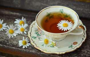 Plante antiinflamatoare pentru a trata gâtul înțepenit: ceai de mușețel