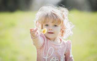 Păpădia în alimentația copilului. 9 beneficii ale acestei plante invazive