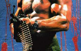 Arnold Schwarzenegger copilarie nefericita