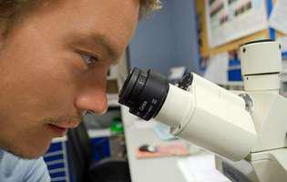 Infecția cu Tinea reprezintă o infecție cutanată des întâlnită produsă de o ciupercă fungică și care produce o eczemă cu formă circulară (ca un inel), de culoare roșiatică și care este pruriginoasă (produce mâncărimi). Imagine cu analize de laborator pentru această afecțiune