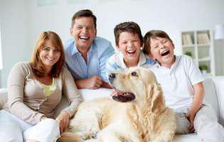 Cum poate un animal de casă să vă îmbunătățească relațiile în familie