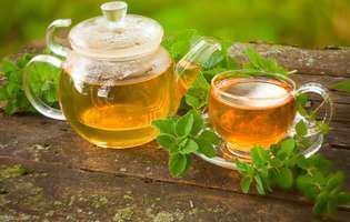 Remedii naturale pentru durerile de cap. Măghiranul, antinevralgic natural