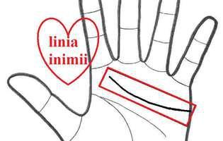 linia inimii în palma unui bărbat