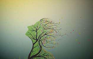 Din ce copac s-a desprins sufletul tău!