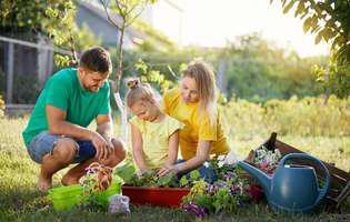 Poți să-ți amenajezi grădina și fără dureri de cap, dacă urmezi aceste sfaturi