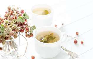 Remedii naturale pentru pietre la colecist: ceai din frag de pădure