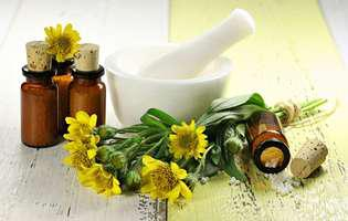 Arnica montana, unul dintre cele mai puternice remedii antiinflamatorii din lume
