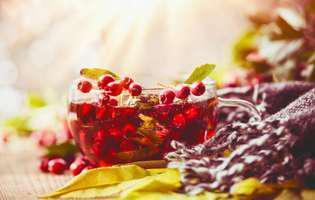 Măceșul și cătina, cele mai bune plante medicinale