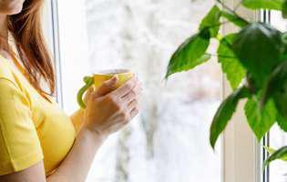 Remedii naturale pentru bronșită: Ceai expectorant