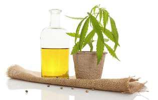 (P) Efectele uleiului CBD depind de metoda de administrare! Iata cum sa asiguri eficienta!