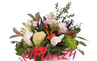 (P) Flori de Sfintii Mihail si Gavril