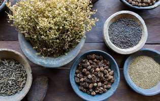 Plante indiene pentru stres și anxietate