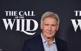 harrison ford, implicat intr-un nou incident aviatic