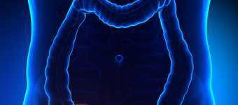 Apendicita (inflamarea apendicelui): cauze, simptome, tratament
