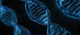 Angiosarcom - reprezintă un tip rar de cancer care se formează la nivelul pereților vaselor sangvine și limfatice. Angiosarcomul poate apărea în oricare parte a corpului, dar cel mai adesea apare la nivelul pielii capului și gâtului. Imagine cu ADN modificat la nivel celular ca urmare a acestui tip de cancer