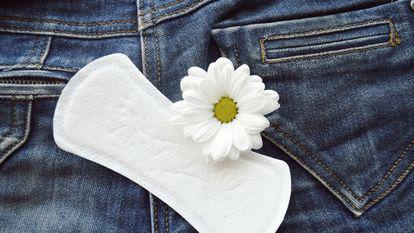 Secretiile vaginale pe parcursul unui ciclu menstrual si in timpul sarcinii