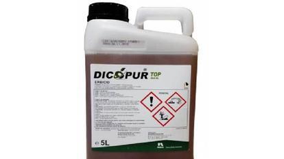 (P) Îngrijirea gazonului: de la plantare, la fertilizare şi erbicidare până la pregătirea pentru iernat