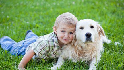 (P) Ia-i un animal copilului tău!