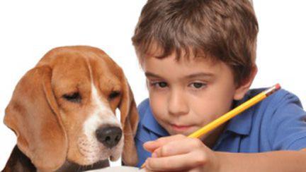 Sănătatea copiilor şi animalele de companie