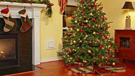 De unde cumpărăm anul acesta bradul de Crăciun?