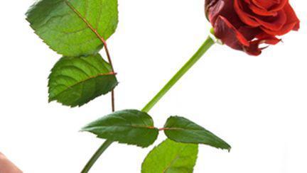Găseşte-ţi iubit de Valentine′s Day!