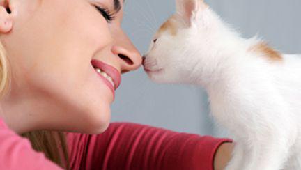 Ce spun animalele despre caracterul oamenilor