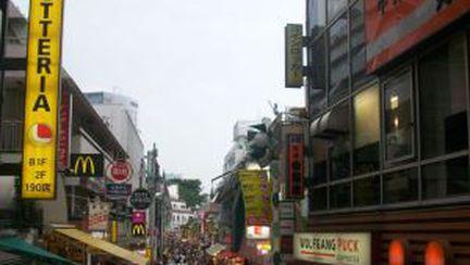 Jurnal de vacanţă – Japonia, izvor de uluire (X)