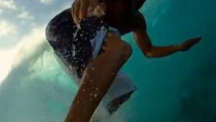 Video: ce vede un surfer