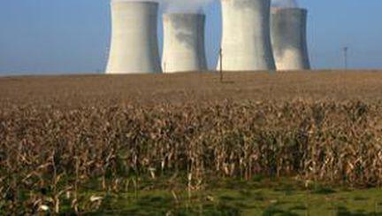 Particulele radioactive pot ajunge în mâncare şi apă