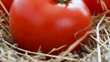 Dieta rapidă cu rosii – slăbeşti 2,5 kilograme în 5 zile