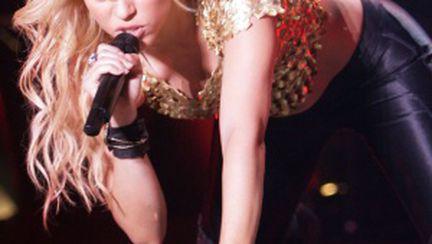 Cele mai ciudate pretenţii ale artiştilor în concerte