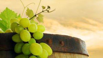 Strugurii, fructele care te ajută să slăbeşti