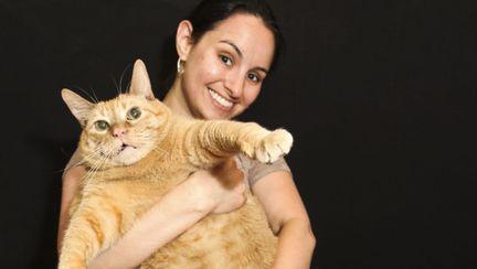 Poze haioase: Pisica asta ar avea nevoie de o dietă