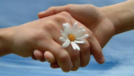 Destinul tău este decis de o floare. Vezi care!
