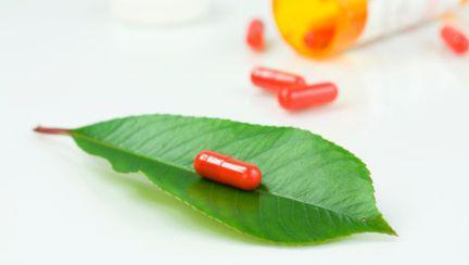 Sănătate: Merişorul, remediu natural pentru orice boală