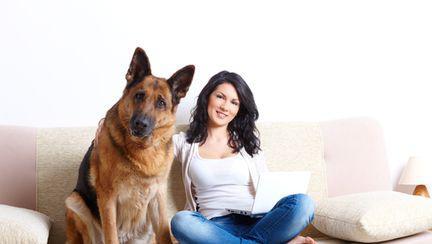 Sănătate: Ce boli poţi să iei de la animalele de companie