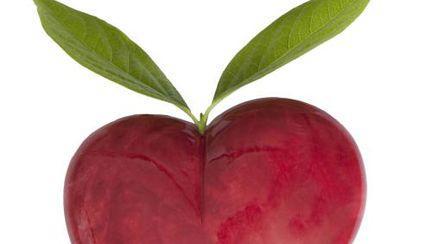 Concurs de Dragobete! Câştigă o cină romantică raw vegan!