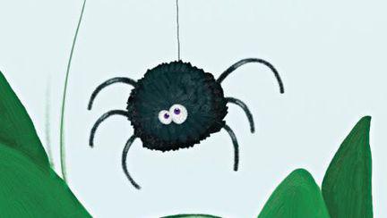 Casă şi grădină: Cum să înlături păianjenii în mod natural