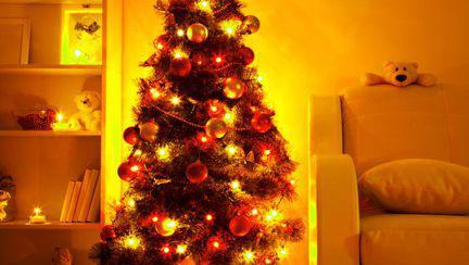 Cum faci bradul de Crăciun să reziste mai mult