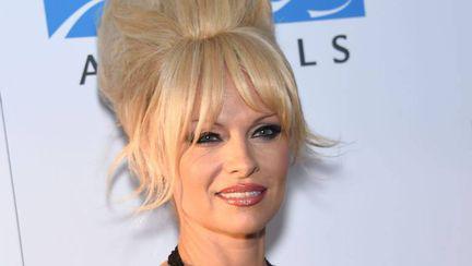 """Pamela Anderson, """"ciopârțită"""" în Photoshop! În ce hal au putut să o modifice"""