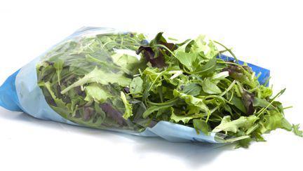 salata punga