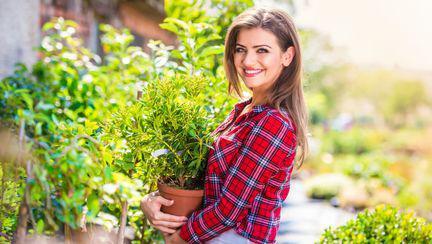Cele mai frecvente 8 probleme care îți pot distruge grădina de vară