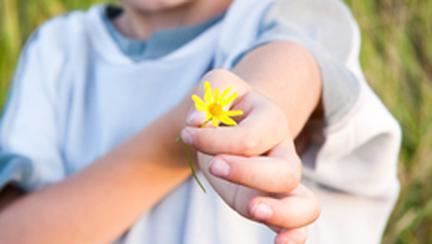 Altruismul – terapie pentru sufletul tau