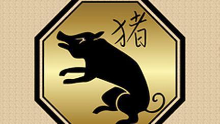 Compatibilitati in zodiacul chinezesc – Porc (Mistret)