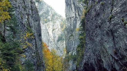 In inima muntelui, prin Cheile Bicazului